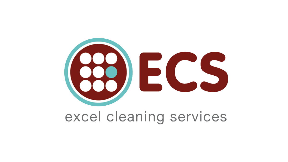 excel cleaning logo